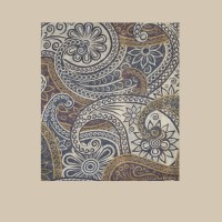 Павловопосадский шарф (палантин) мужской «10372-17»
