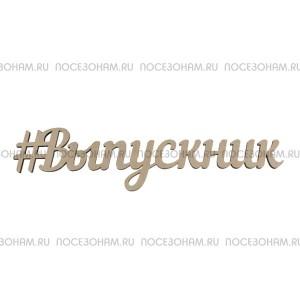 """Надпись плоская """"Выпускник"""""""