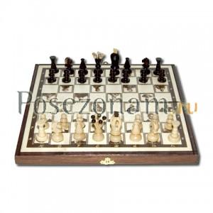 Шахматы №144 ар