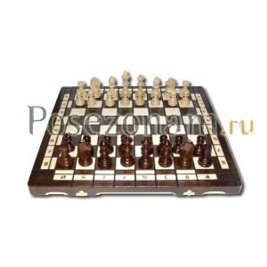 Шахматы №176м