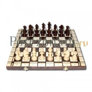 Шахматы №178