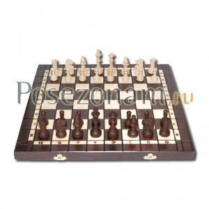 Шахматы №179