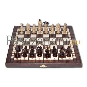 Шахматы №180