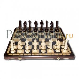 Шахматы №104