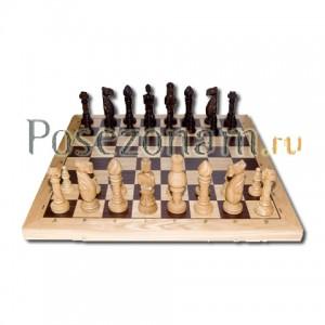 Шахматы №105