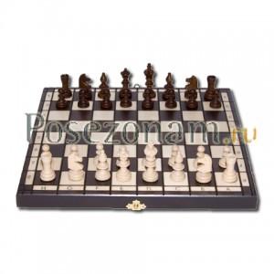 Шахматы №122а